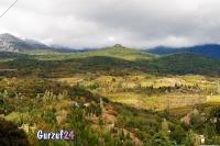 Крымские горы  в Гурзуфе._3