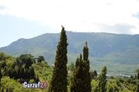 Крымские горы  в Гурзуфе._8