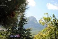 Крымские горы  в Гурзуфе._9